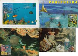 Brazil 2002 Complete Series 4 Maximum Card Marine Fauna Animal InvertebrateCoral Reef Ecosystem Fish Starfish Seahorse - Vita Acquatica