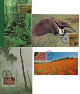 Brazil 1999 Complete Series 4 Maximum CardNational Park Forest Fire Prevention Tree Flora Anteater Fauna Animal Mammal - Cartoline Maximum