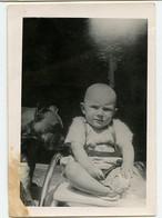 Snapshot Chien Pet Dog Boxer Bebe Enfant Baby Kid Composition - Anonyme Personen