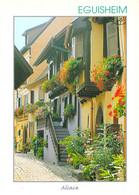 68 - Eguisheim - Une Ruelle Pittoresque Avec Ses Maisons à Colombages Ornées De Géraniums - Other Municipalities