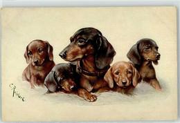 53089872 - Sign. Reichert, C. Welpen TSN - Dogs