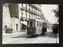 Photographie Originale De J.BAZIN : Tramways De CLERMONT-FERRAND : Près De ROYAT  En 1953 - Treinen