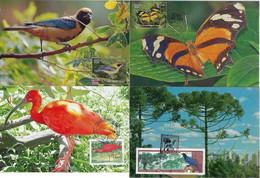 Brazil 1998 2008 4 Maximum Card StampPreservation Of Fauna And Flora Animal Bird Butterfly Pine - Altri