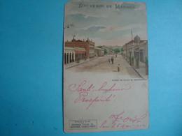 BRÉSIL - MANAOS - Avenue Du Palais Du Gouvernement - 1902 - Manaus