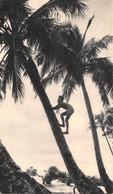 CPSM Moutarde AMORA - Dans Le Sillage De BOUGAINVILLE. VII - NOUVELLE CALÉDONIE Timbrée, Oblitérée 1955  ( ͡♥͜ʖ ͡♥) ♥ - Publicité