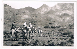 AFR-1405   PORT SUDAN : In The Red Sea Hills - Sudan