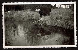Photo Originale 11 X 6,5 Cm - C1940 - Reflet Du Pêcheur Dans La Rivière - Eau - Homme - Pêche - Reflexion / Reflection - Personnes Anonymes