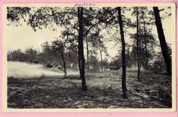 Kasterlee - Achterberg - 1960 - Kasterlee