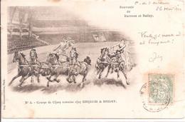 CPA - Course De Char Romains Chez Barnum & Bailey - Circo