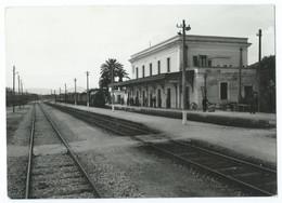 SPARANISE (IT) - Stazione Ferroviaria / La Gare - Train à Vapeur, Voies, Rails... - Animée - CPSM N&B -Scan Recto-Verso - Caserta