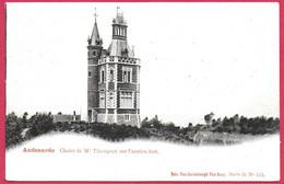 C.P. Oudenaarde =  Chalet  De M. THIENPONT Sur  L'  Ancien Fort - Oudenaarde