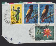 Somalia Somalie Mogadiscio 1968 Dura Falco Giocoliere Fenicotteri Fauna Fiori Hawk Juggler Flamingos Flowers FRB00096 - Somalia (1960-...)
