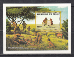 1998 Chad Tchad Palaeontology Australopithecus Joint Mission With France Souvenir Sheet   MNH - Preistoria