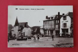 * - MEYMAC - Entrée Du Champ De Foire - Vaches Sur La Place - Otros Municipios