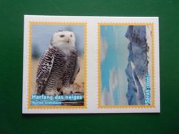 PANINI ANIMAL WORLD Animaux N°518 Srek Suède Harfang Des Neiges Hibou Sverige Uggla Owl Oiseau Bird Vogel Uccello - Edición Francesa