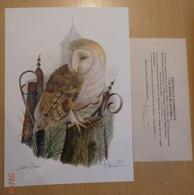 A.Buzin Genummerde Tekening 160/400 Met Certificaat Kerkuil - 1985-.. Birds (Buzin)