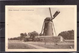 Dilsen ( Limburg ) --   Molen In Landschap - Dilsen-Stokkem