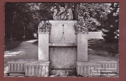 Vaud - LAUSANNE-OUCHY - Fontaine Des Singes, Parc Denantou - VD Vaud
