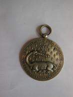 Médaille Souvenir Concours De Manoeuvres De Pompes à Incendie Fontainebleau 77 - 30 Juin 1895 - Bomberos