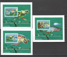 AA1065 IMPERFORATE 2007 REPUBLIQUE DE GUINEE MARINE LIFE REPTILES TURTLES FISH TORTUES ET POISSONS 3 LUX BL MNH - Tartarughe