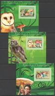 AA1074 IMPERFORATE 2007 DE GUINEE FAUNA BIRDS OWLS MUSHROOMS 3 LUX BL MNH - Gufi E Civette