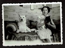 Photo Originale 8,5 X 6 Cm - Dame Avec Un Chat Noir Et Un Chien Blanc Sur Un Canapé - Voir Scan - Anonyme Personen