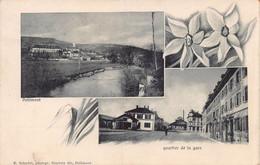 Delémont Quartier De La Gare - Narcisses - JU Jura
