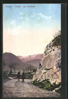 Cartolina Trento, Via Venezia - Trento