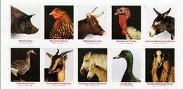 USA - 2021 - Heritage Breed - Farm Animals - Mint Self-adhesive Stamp Set - Unused Stamps