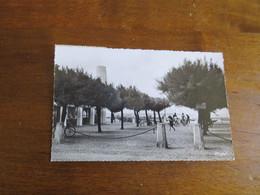 ANDERNOS (Gironde) 49 - Les Promenades Et La Passerelle. - Andernos-les-Bains