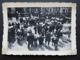 387 - Photo - Foires Aux Bestiaux à Pontgibaud - Avril 1942 - Anonieme Personen