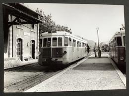 Photographie Originale De J.BAZIN : Autorails : Gare De La VESUBIE ( Alpes Maritimes ) En 1953 - Trenes