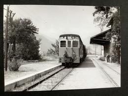 Photographie Originale De J.BAZIN : Autorails : Gare De LA TINÉE  ( Alpes Maritimes ) En 1956 - Treinen