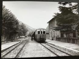 Photographie Originale De J.BAZIN : Autorails : Gare De PUGET- THÉNIERS ( Alpes Maritimes ) En 1959 - Treinen