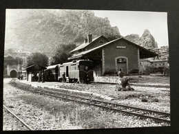 Photographie Originale De J.BAZIN : Autorails : Gare De ENTREVAUX  ( Alpes De Haute Provence  ) En 1968 - Trenes