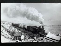 Photographie Originale De Marc DAHLSTRÖM : RENFE:Train Vapeur 1040 Vers ALICANTE  En 1965 - Trenes