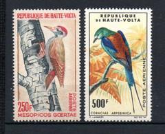 W-8  Congo PA N° 47 à 53 ** Thématique Oiseaux  A Saisir !!! - Nuovi