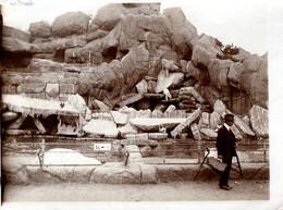 Photo Originale Homme à La Valise Et Chapeau Devant L'Enclos Rocheux Des Ours Polaires De Berlin Vers 1910 - Zoo Eisbär - Anonymous Persons