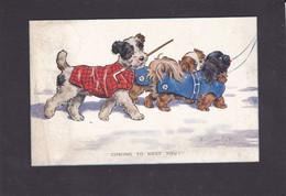 Dog Card  -  Coming To Meet You !! -  Florence E Valter.    1933. - Hunde