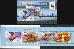 Korea 2015. Red Knot (Calidris Canutus) (MNH OG) StampPack - Korea (Nord-)