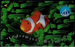 SINGAPORE 2002 PHONECARD FISH USED VF!! - Pesci