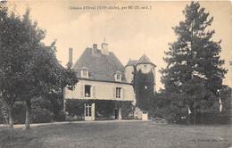 EURE ET LOIR  28  CHATEAU D'ORVAL, PAR BU - Autres Communes