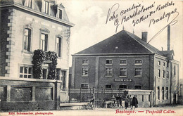 Belgique - Brasserie - Brouwerij - Bastogne - Brasserie Collin - Bastogne
