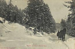 TENCE  La Neige Au Bois Du Besset  Cheval Traineau Recto Verso - Andere Gemeenten