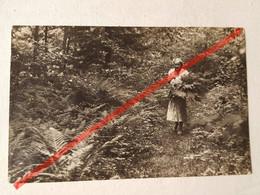 Photo D'époque. Original. La Fille De La Forêt Collectionne Les Fougères. La Lettonie D'avant-guerre - Gegenstände