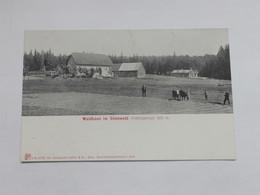AK, Waldhaus Im Steinwald, Fichtelgebirge, Oberpfalz, Um 1900 - Ohne Zuordnung