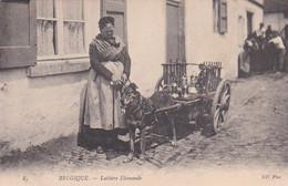 485234Belgique, Laitière Flamande. - Other