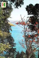 ►  CPSM   Rwanda    Le Lac Kivu à Kibuye - Rwanda