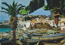 QO - Lote 5 Cartes - PORTUGAL - Madeira:  Funchal / Camara De Lobos / Flowers - 5 - 99 Cartes