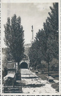 Postcard RA014325 - Srbija (Serbia) Beograd (Belgrade / Singidunum / Belgrado) - Serbia